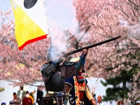 東北三名城「白河小峰城」桜祭り~鉄砲隊も登場!戊辰の激戦地の名桜が蘇る!|福島県|トラベルjp<たびねす>