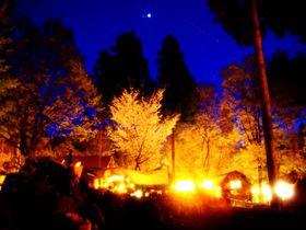 日本一予約が困難「キャンプ・アンド・キャビンズ那須高原」人気の秘密