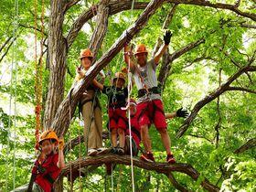 夢と冒険がいっぱいの「キャンプ・アンド・キャビンズ那須高原」|栃木県|トラベルjp<たびねす>