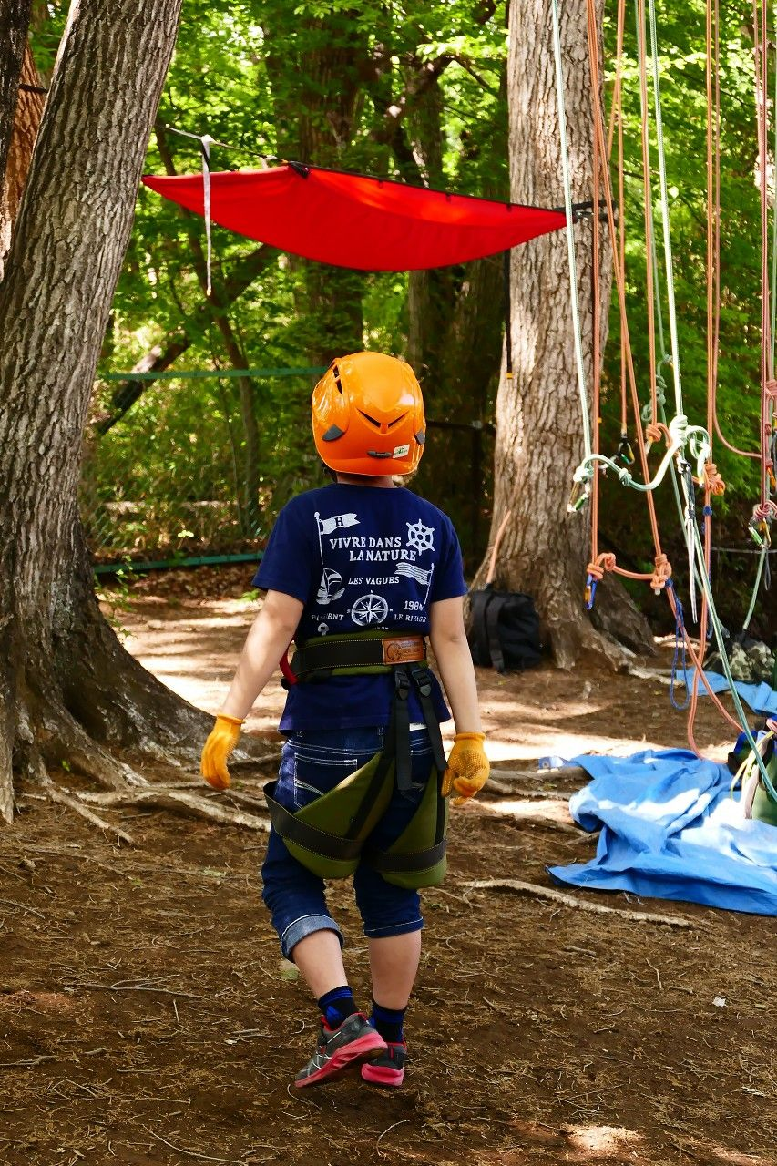 やる気満々樹上の人へ!単独ツリークライミングに初挑戦!