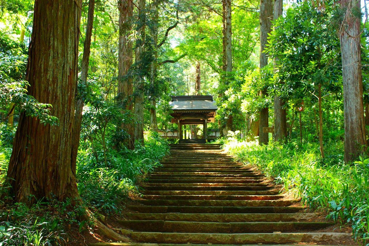 室町時代から続く六百年以上の歴史を持つ、栃木県北の古刹!