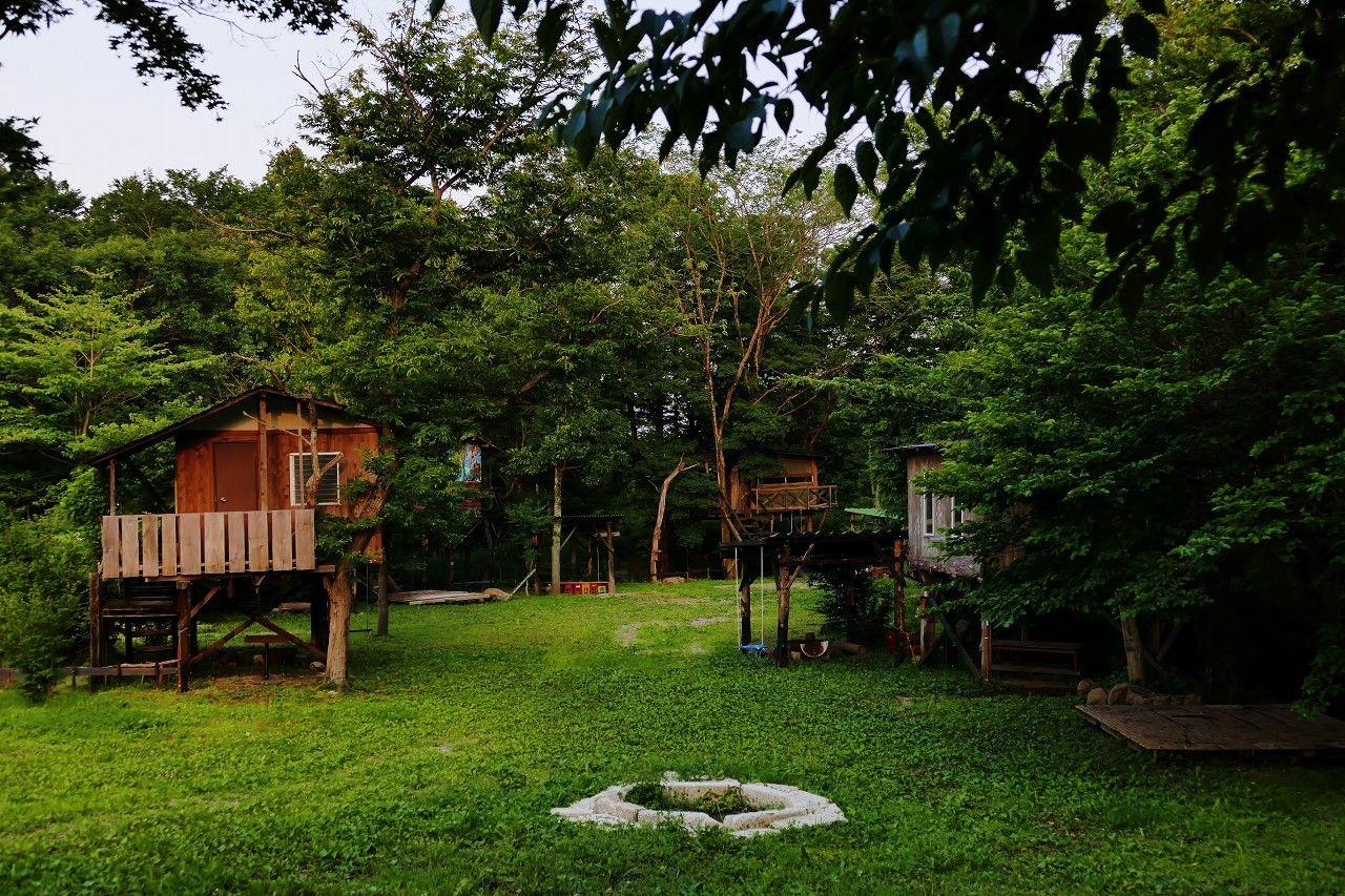 日本一パワフルなオーナー手づくりのツリーハウスは現在進行形の増殖中!