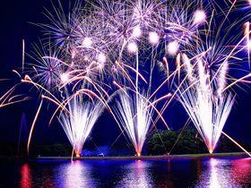夏の夜空に炸裂する湖上の花火「那須りんどう湖レイクビュー」|栃木県|トラベルjp<たびねす>