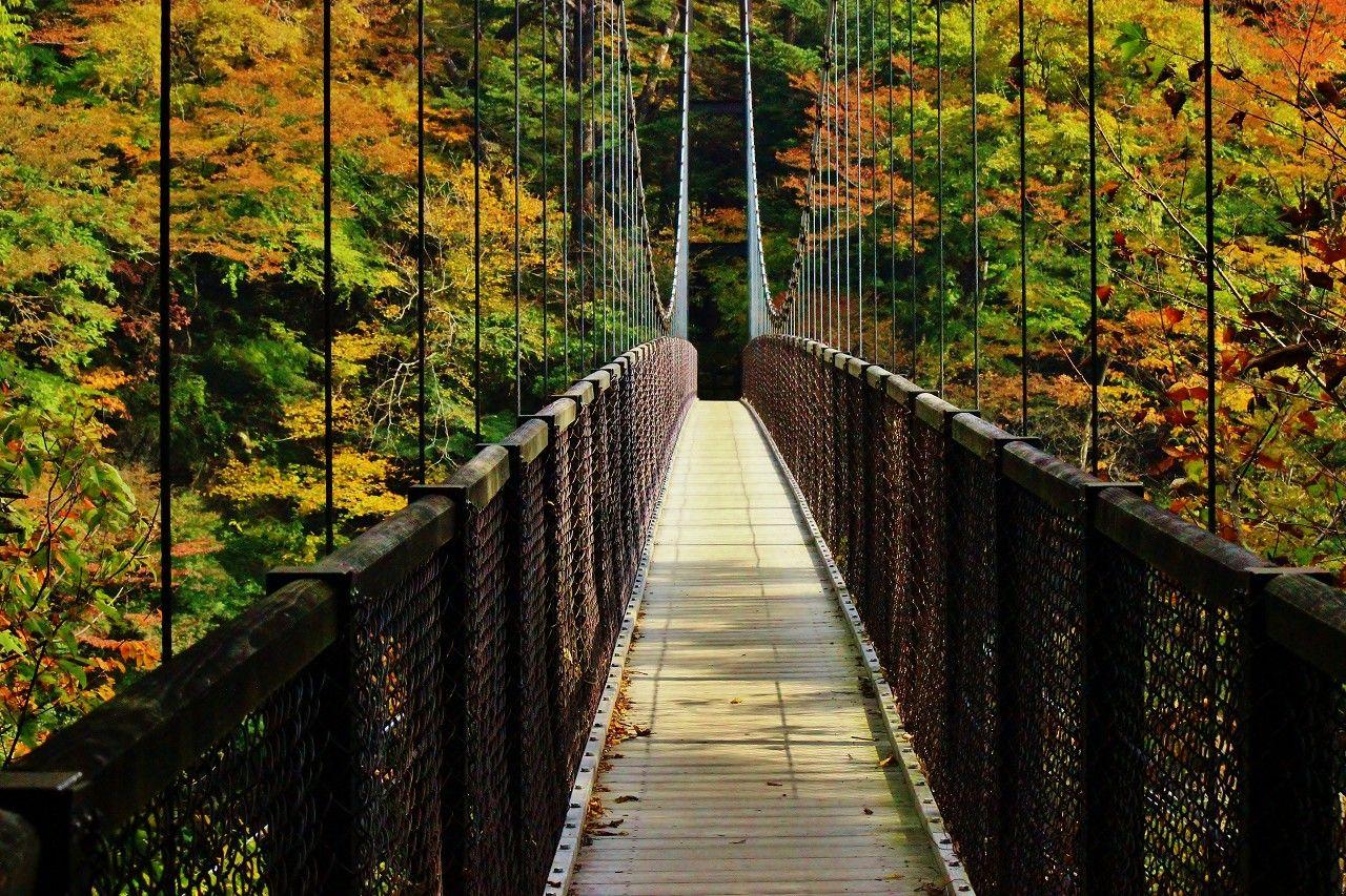 落差53m直瀑の滝「回顧の滝」と長さ100mの「回顧の吊り橋」