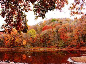 紅葉が美しい那須塩原「大沼園地」は日本最初の自然研究路!