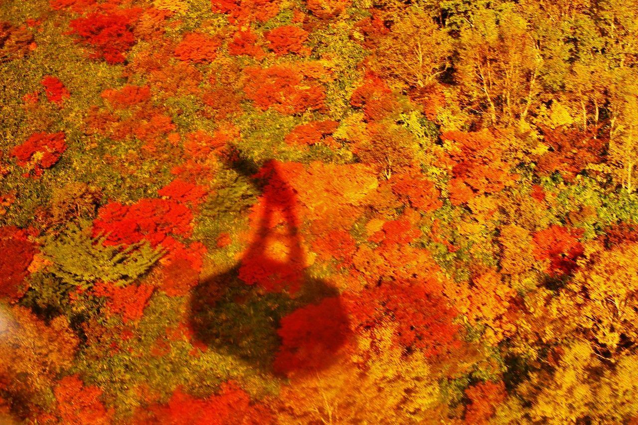 初心者が紅葉を楽しむならロープウエイで一気に9合目まで!