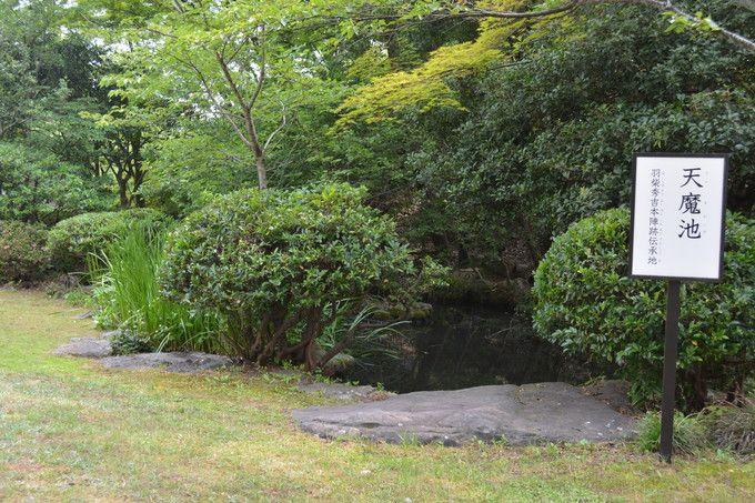 足羽神社近くの「天魔が池」