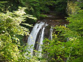 マイナスイオンいっぱいの蓼科「横谷渓谷」で滝巡りをしよう!|長野県|トラベルjp<たびねす>