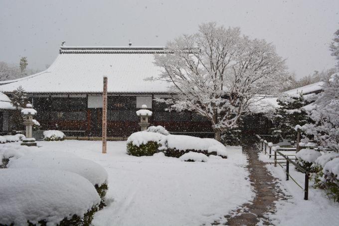 前庭の雪景色