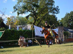 勇壮な騎馬武者姿を堪能!京都・世界遺産上賀茂神社「笠懸神事」|京都府|トラベルjp<たびねす>