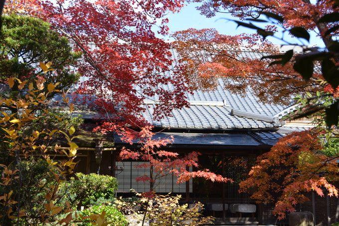 真田家一門の墓も!京都通の通う紅葉名所「大法院」は信之の菩提寺
