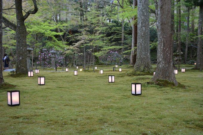 観光スポット多数!春爛漫・京都「大原の里」で桜巡り