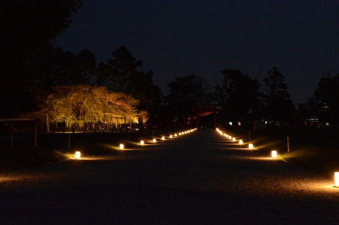 洛北 上賀茂神社境内ライトアップ