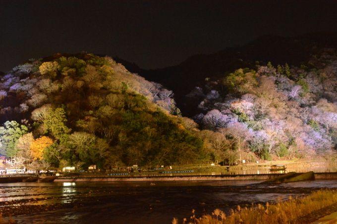 冬の夜を彩る華麗なライトアップ「京都・嵐山花灯路」交通至便おすすめスポット