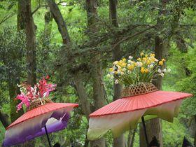新緑と葵祭の色彩がまぶしい!葵祭巡行の日の京都「下鴨神社」