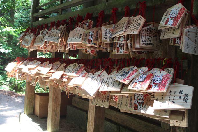開運UPに喜びの声も続々!鳥取の金運パワースポット「金持神社」