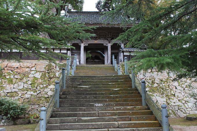 円山応挙の襖絵がこんなにたくさん!別名「応挙寺」ともいわれる「大乗寺」