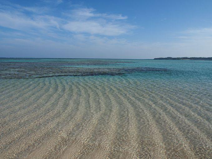 潮の満ち引きでできる百合が浜の風紋!