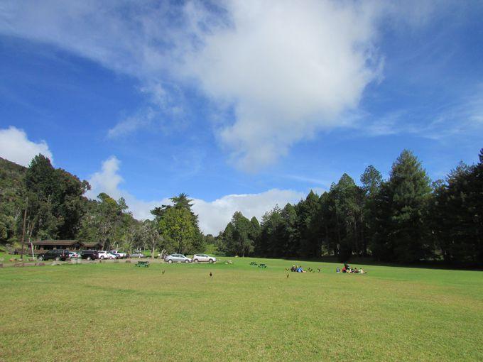 緑の芝生が広がる高原、コケエ州立公園でひとやすみ