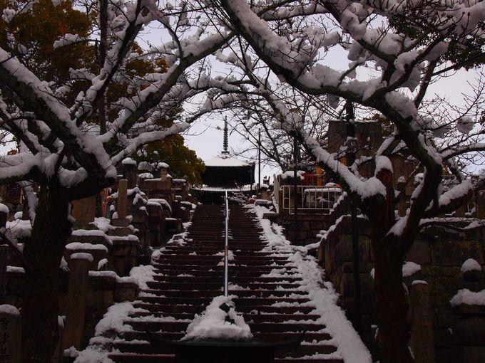 徳川秀忠ゆかりの三重塔