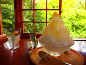 どれから食べる?京都のおすすめかき氷15選