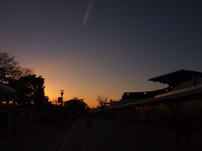 梅小路公園 京都水族館