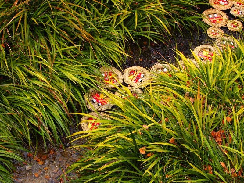 光琳の梅も美しい!京都・下鴨神社の雅な行事「流し雛」