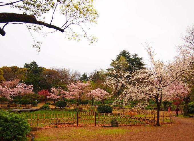 鶴舞公園の歴史
