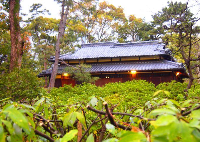 「鶴々亭」と歴代の茶室