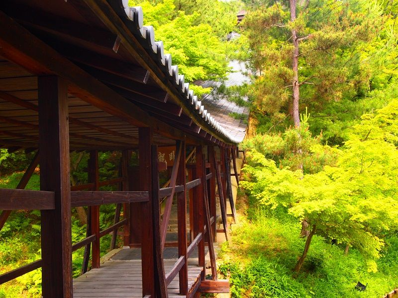 清水寺に南禅寺・京都東山エリアは人気観光スポットの宝庫