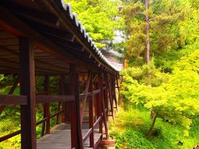 京都・東山のおすすめ観光スポット10選