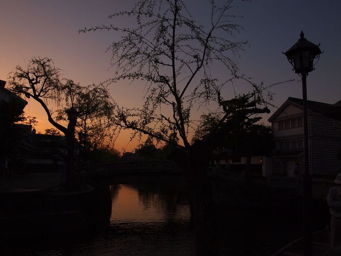 倉敷川の夕景