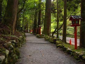 宇宙のパワーも集まる!?京都北部の魔界・伝説の地5選|京都府|トラベルjp<たびねす>