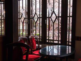 一幅の絵画のような桜景色が楽しめる!京都「喫茶KANO」|京都府|トラベルjp<たびねす>