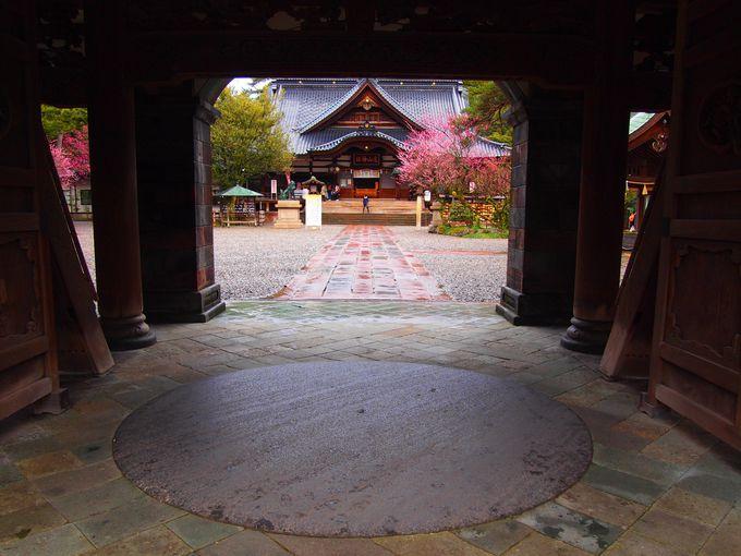尾山神社「神門」