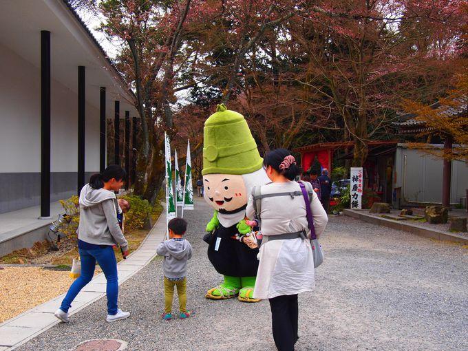 微妙寺・文化財収蔵庫周辺の見所