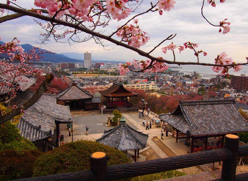滋賀県「三井寺」見所は多種多彩!湖国の名刹の巡り方