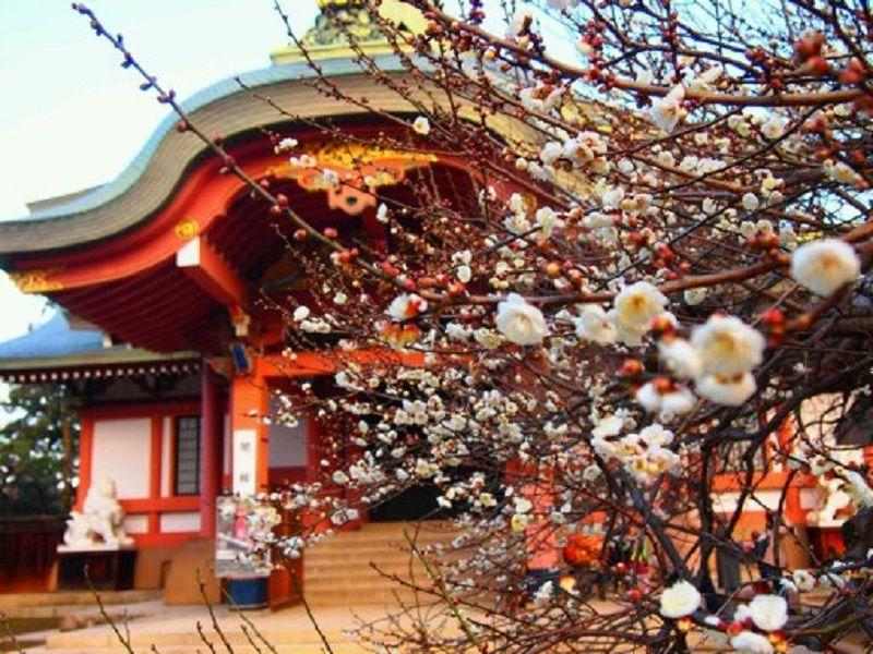 源氏ゆかりの兄弟刀を所蔵「北野天満宮」&「大覚寺」