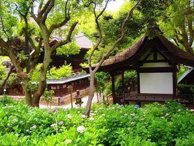 「刀剣乱舞」京都聖地!平安〜鎌倉時代の刀剣・刀匠ゆかりの地を巡る