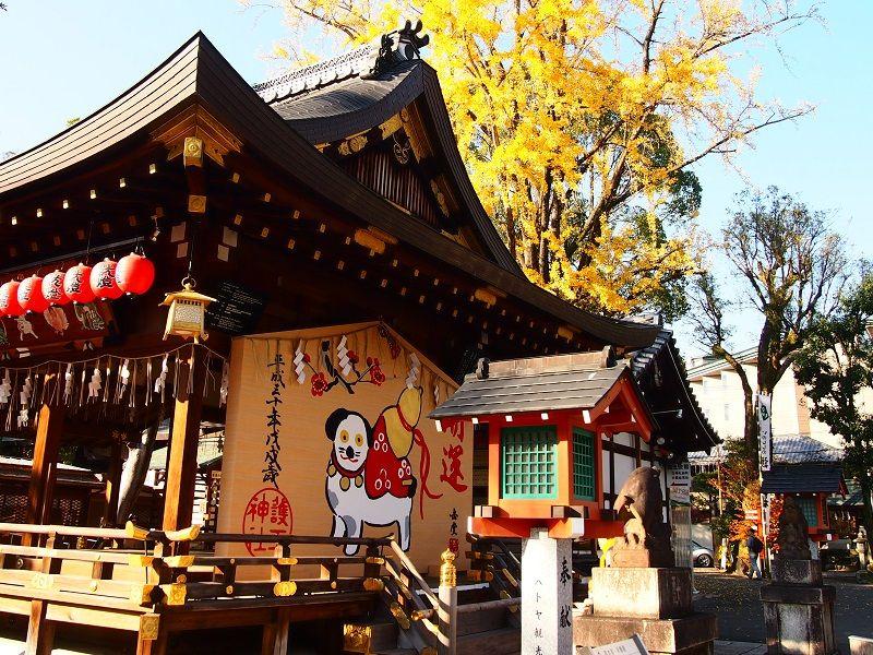 旅は足元から!足腰の守護神・京都「護王神社」で初旅祈願