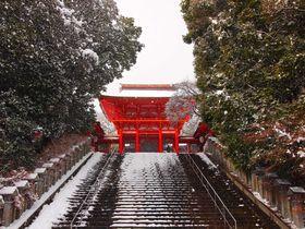 雪降る冬の光景が美しい!『ちはやふる』の舞台「近江神宮」
