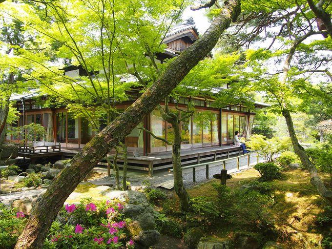 貴重な大正建築も!奈良市「吉城園」で初夏の美しい光景を