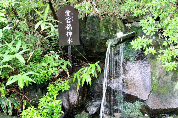 温泉神社パワースポットその2.福神水で福を招きましょう