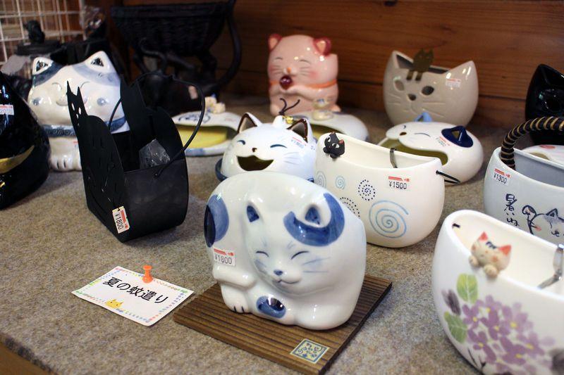 ネコ好きは注目!!那須でオススメの「猫茶屋」の正体とは?