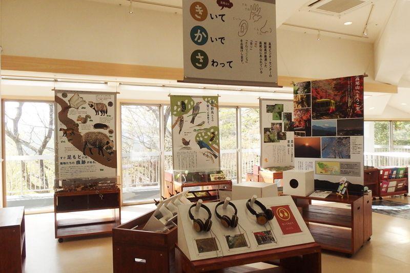 子どもでも高尾山の自然について楽しく学べる展示エリア