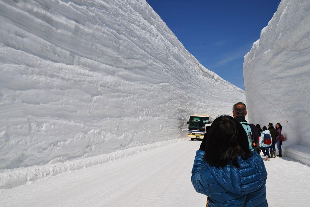 立山の春を告げる風物詩、「雪の大谷」を体感できる雪の大谷ウォーク