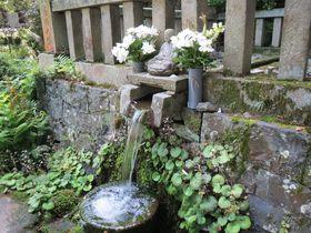 香川の強力パワースポット!伝説の霊泉と230年ところてんだけを作る茶屋|香川県|トラベルjp<たびねす>