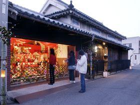 町がお雛さまでいっぱい!「引田ひなまつり」(東かがわ市)|香川県|トラベルjp<たびねす>