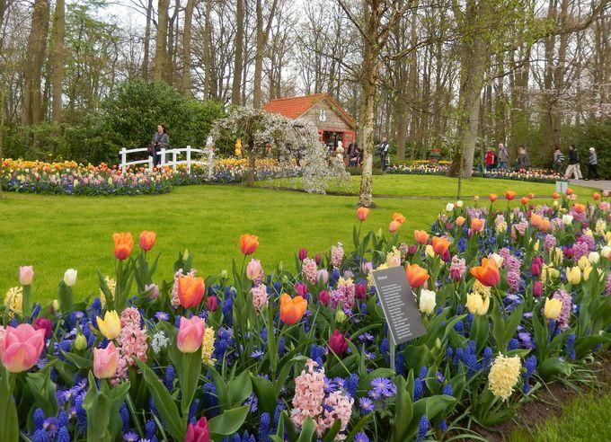 区画で異なったデザインの園内は、飽きることがない!