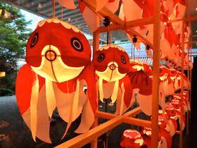 東京・目黒雅叙園「和のあかり×百段階段」で甘美な日本の夏に酔う|東京都|トラベルjp<たびねす>